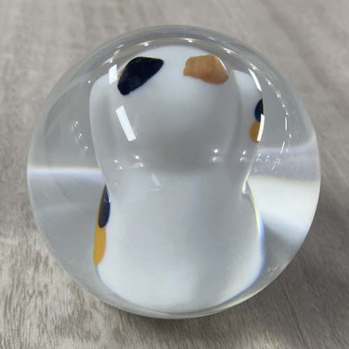 Fortune Cat Shift Knob back view