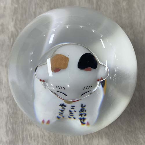 Fortune Cat Shift Knob top view