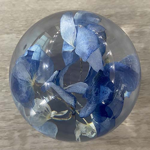 Top View of Hydrangea Paperweight